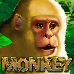 Monkey | PLAYSTAR EUWINS.COM